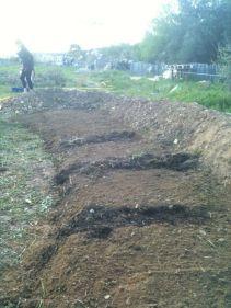 Il faut pouvoir marcher quelque part quand même, pour récolter les futures légumes donc les passages sont faits avec brindilles et paille.